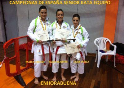 XLIV Campeonato de España Senior de Karate